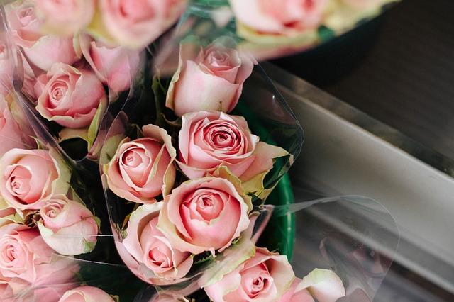 balené růže